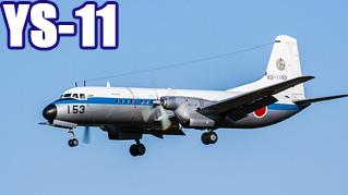 YS-11